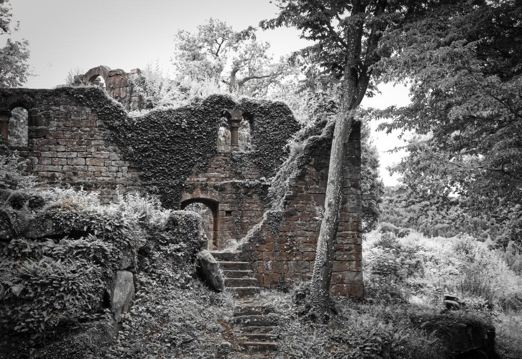 Burg_Eberstadt