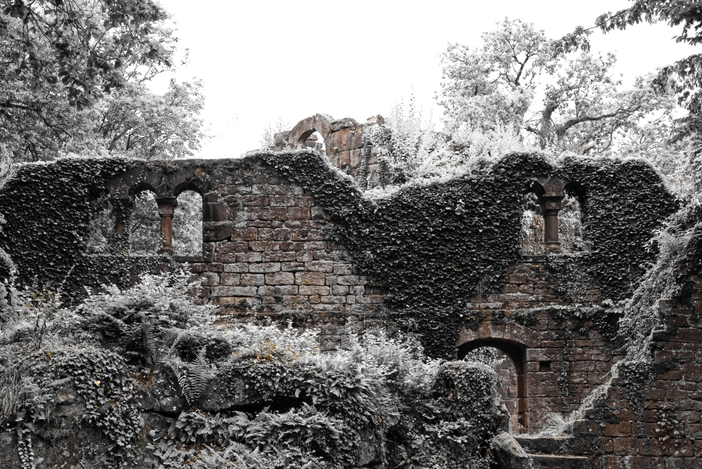Burg_Eberstadt_Detail