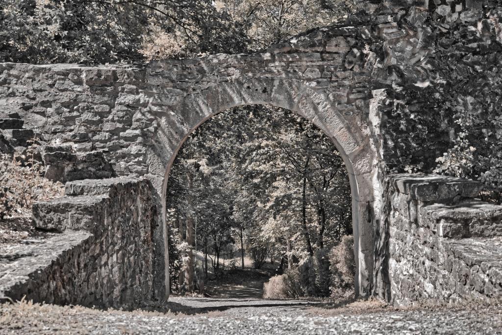 Burg_Forchtenberg_Torbogen