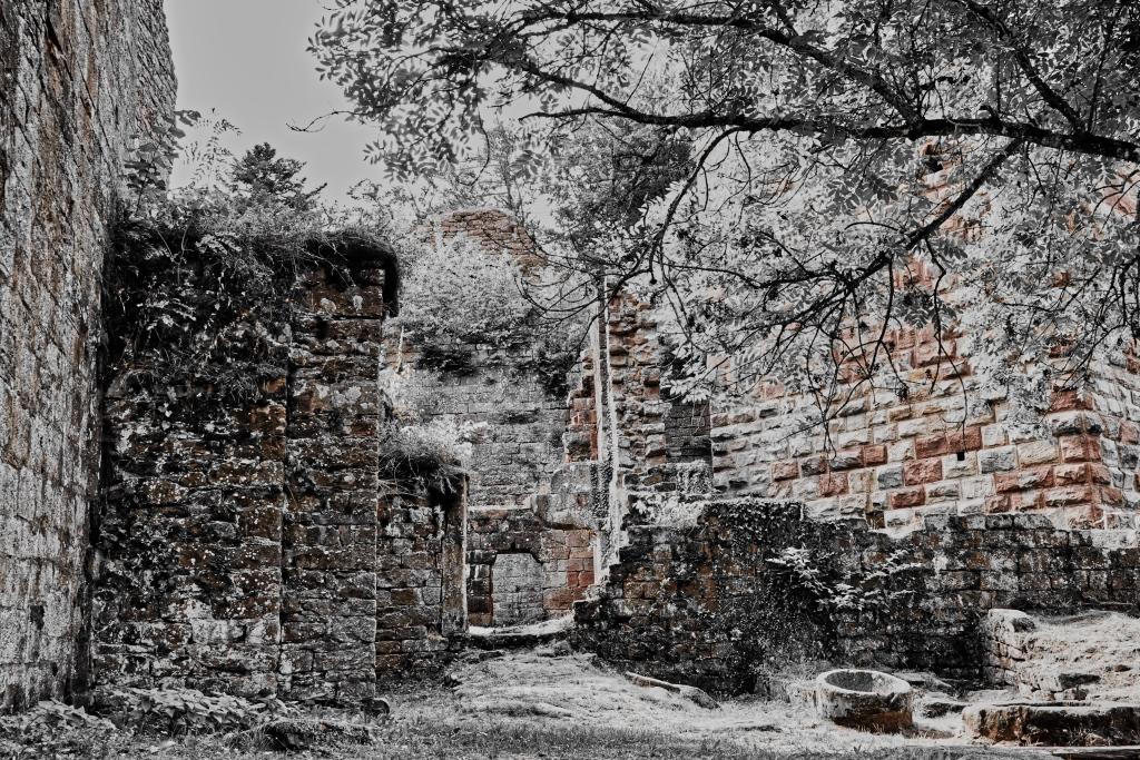 Burg_Wildenburg_Detail