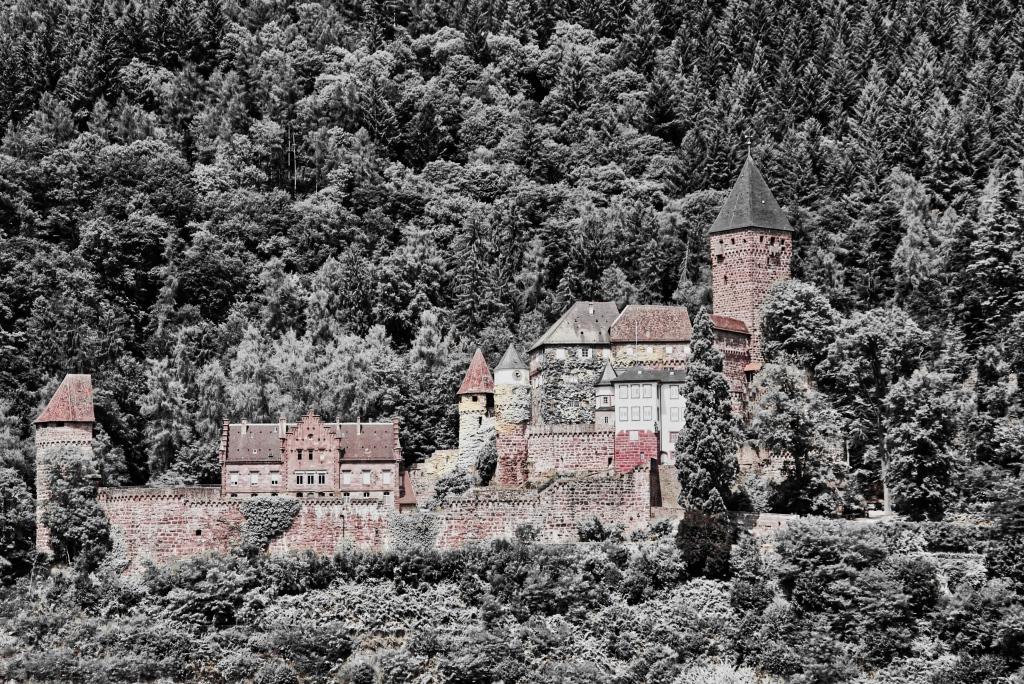 Burg_Zwingenburg